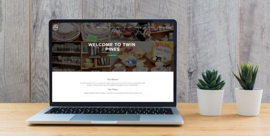Gazelle Strategic Partners Twin Pines Web design